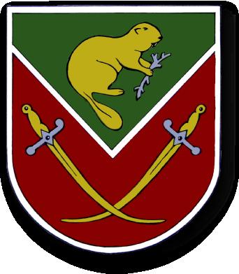 Бобровицька районна рада